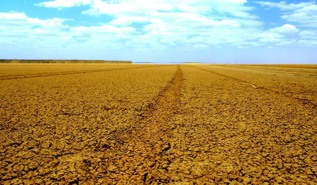 tracks_chalbi_desert